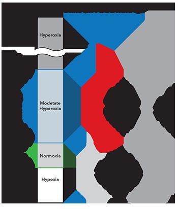 Masimo - Oxygen Reserve Index (ORi™)